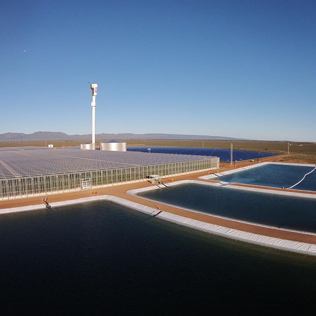 food-with-seawater-and-concentrated-solar-power