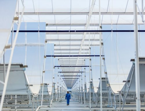 CSP EOR developer cuts costs on 1 GW Oman Concentrated Solar Power project